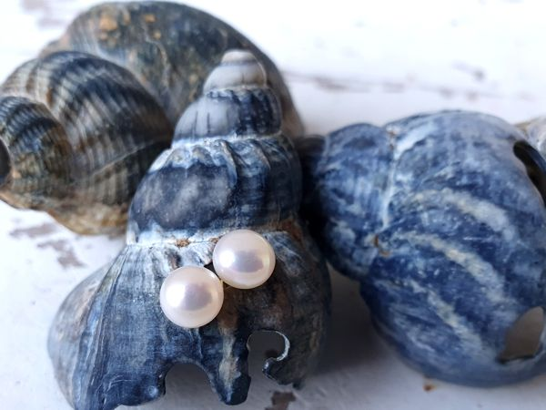 CHRIST Pearls Ohrstecker – perlmuttfarben, Gelbgoldstecker, Bouton 6 mm