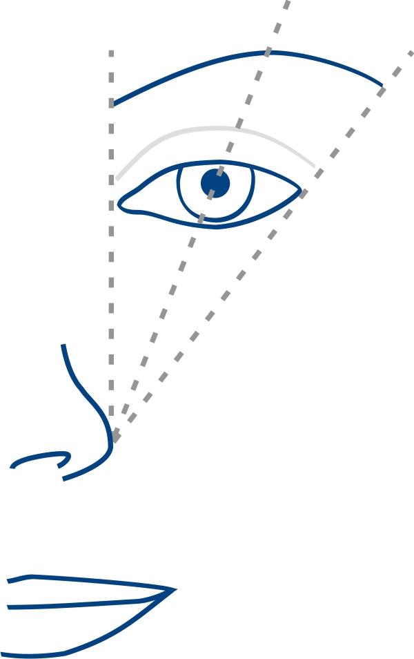 Der perfekte Augenbrauenschwung